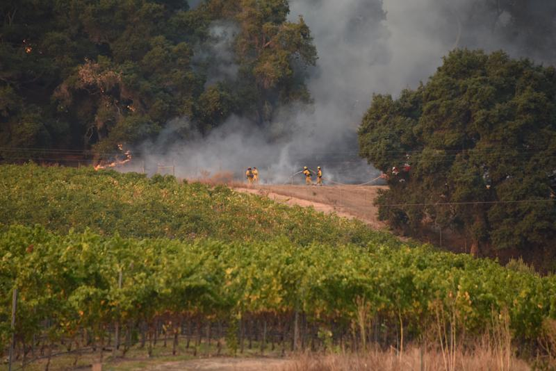 Firefighters protect a vineyard in Santa Rosa, in Sonoma County, on Oct. 11. Damage at vineyards has also caused job losses. Particularly hard hit are immigrant families.