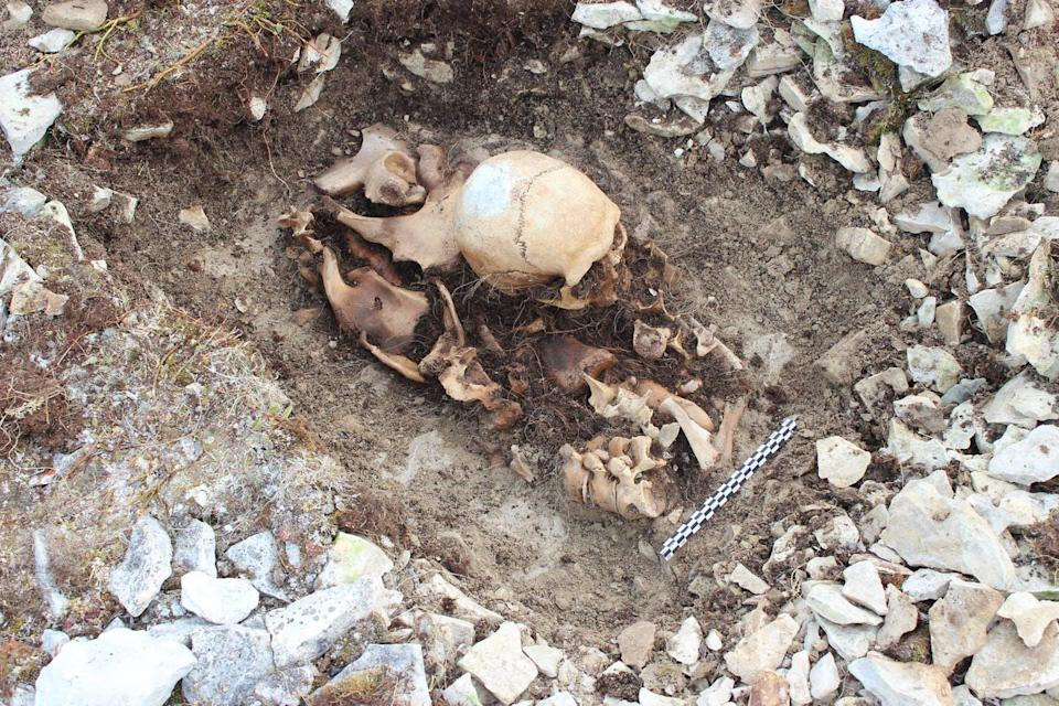 human skull and remains found buried