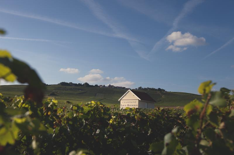 Major Champagne Houses Are Embracing a New Label: Biodynamic