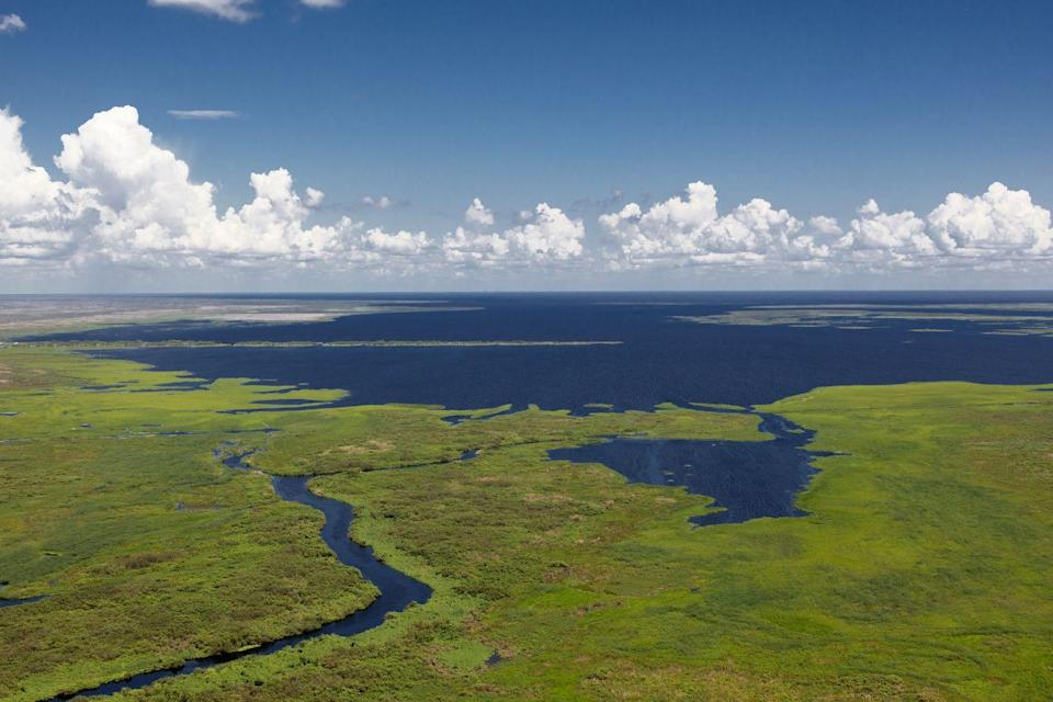 <p><strong>Lake Okeechobee</strong> borders the Everglades of southern Florida. The lake has a unique topography, and is known for it's superior fishing. </p>