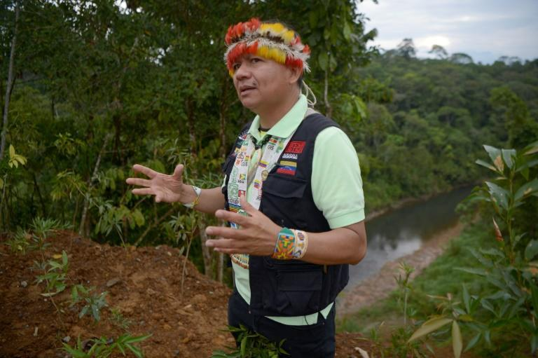 The president of the Coordinator of Indigenous Organizations of the Amazon River Basin (COICA), Gregorio Mirabal, is alarmed by the threats to the some 500 tribes that act as guardians of the Amazon rainforest (AFP/Rodrigo BUENDIA)