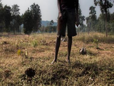 Haritha Haram and forest rights: How a scheme to increase green cover has upended the lives of Telangana's tribals