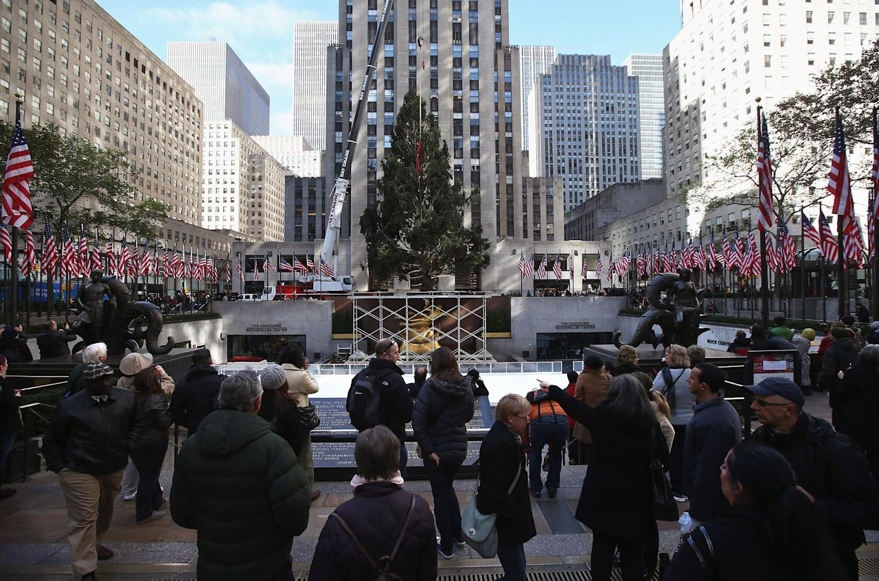 NEW YORK, NY - NOVEMBER 14:  People watch as the Rockefeller Center Christmas tree is raised into position on November 14, 2012 in New York City. The tree, an 80-year old Norway Spruce, was donated by Joe Balku of Flanders, New Jersey. It weighs approximately 10 tons, measures 80 feet tall and is 50 feet in diameter. The official tree-lighting ceremony will be Wednesday, November 28.  (Photo by John Moore/Getty Images)