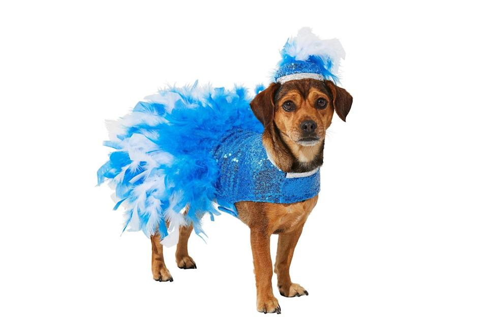 """<p>Dogs who love being the center of attention would do great in this flashy dancer costume. </p> <p><strong>Buy it!</strong> Showgirl Dog Costume, $17.99; <a href=""""https://www.anrdoezrs.net/links/8029122/type/dlg/sid/PEO25HalloweenCostumesforDogsthatWillHaveTrickorTreatersHowlingwithJoykbender1271PetGal12909733202109I/https://www.chewy.com/frisco-showgirl-dog-cat-costume/dp/287480"""" rel=""""sponsored noopener"""" target=""""_blank"""" data-ylk=""""slk:Chewy.com"""" class=""""link rapid-noclick-resp"""">Chewy.com</a></p>"""