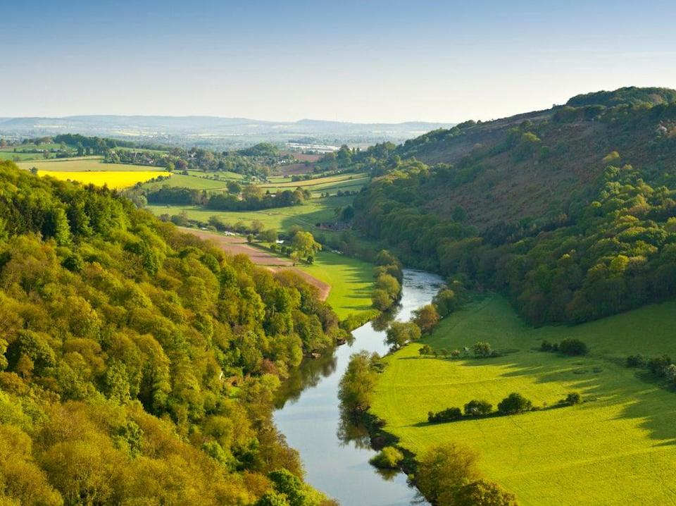 Large areas of new woodlands are set to be planted from Devon to Cumbria as part of the government's 'Woodlands for Water' project  (Getty Images/iStockphoto)
