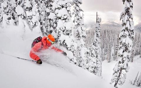 Revelstoke ski resort receives around 12m of powder each year - Credit: Royce Sihlis