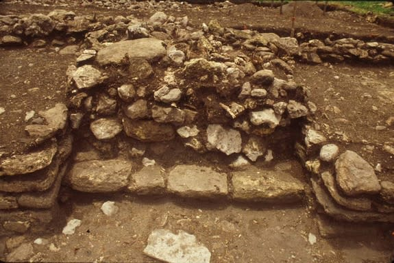 The Maya council house had two altars, each of which originally had a sculpted turtle on it.
