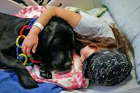Visits by therapy dogs to the Exequiel Gonzalez Pediatrics Hospital in Santiago, Chile help calm both children awaiting surgery and their caregivers