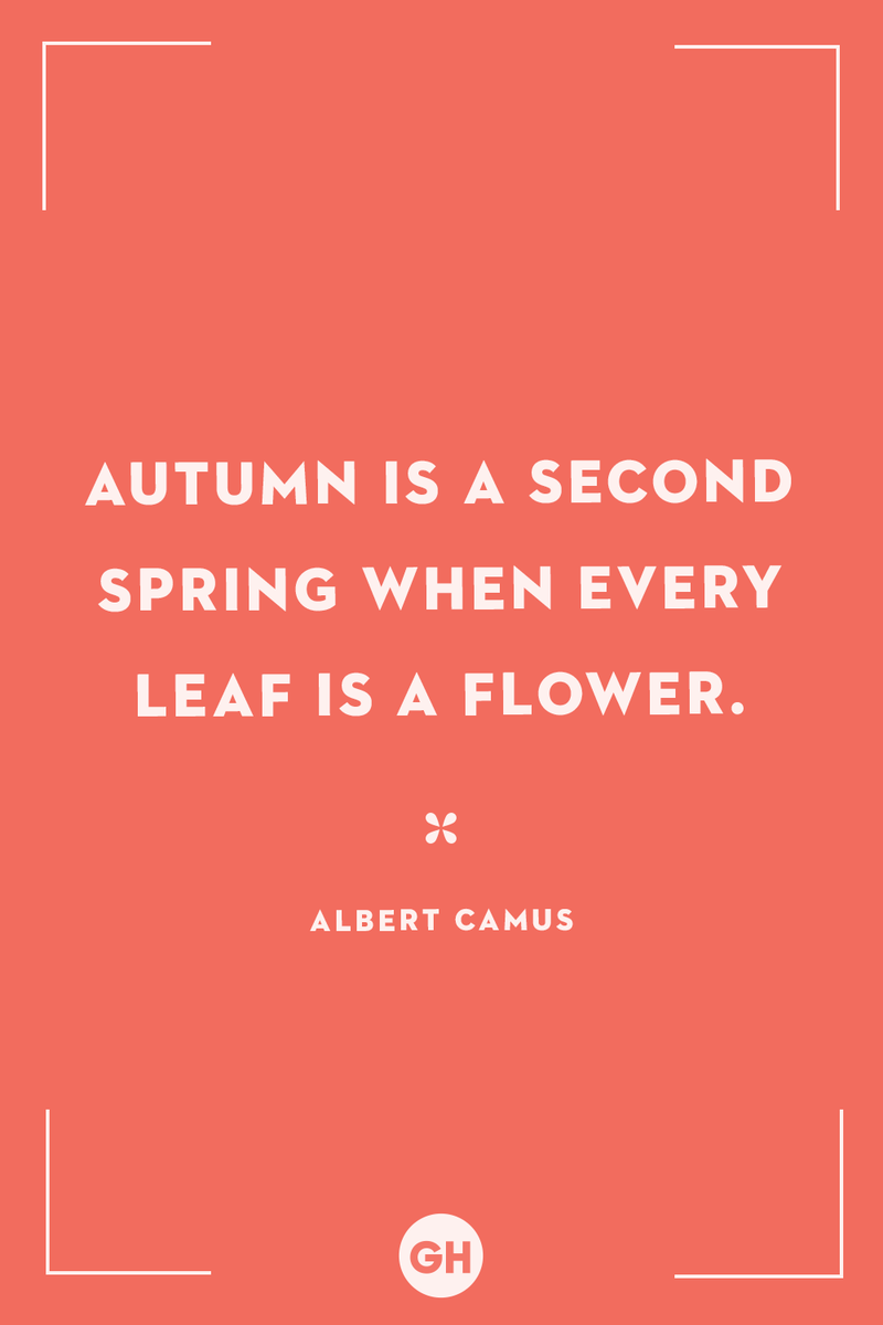 <p>Autumn is a second spring when every leaf is a flower.</p>