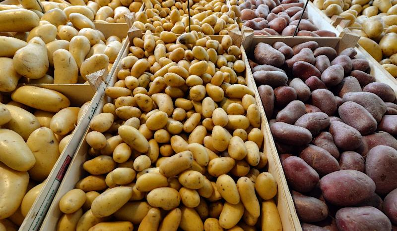 An Australian man plans to eat nothing but potatoes for an entire year, to break what he terms his 'food addiction' (AFP Photo/Georges Gobet)
