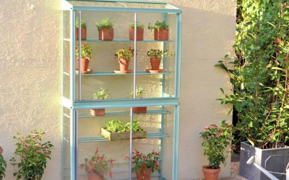 The Westminster mini greenhouse - Garden Products