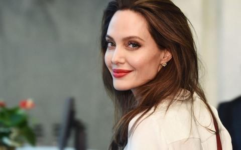 Angelina Jolie said she had warned other actresses about Mr Weinstein after he made unwanted advances toward her - Credit: Getty