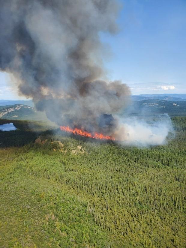 One of the weekend's five new fires, near Lake Laberge. It's being monitored by the government but is being allowed to burn.  (Wildland Fire Management - image credit)