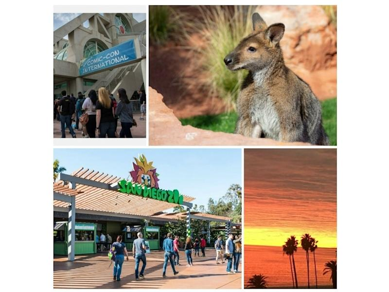 Photo Credits: Shutterstock/Sherry V Smith; Courtesy Living Desert Zoo and Gardens; Shutterstock; Colin Miner/Patch