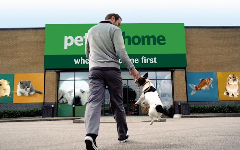 Pets at Home shares soar on surging demand for dogs and cats