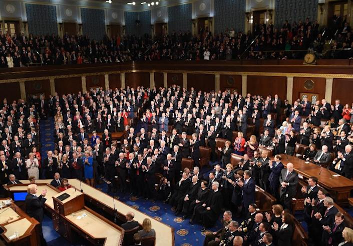 US President Donald Trump called on a packed joint session of Congress to enact hardline curbs on immigration (AFP Photo/SAUL LOEB)