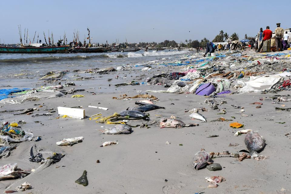 People walk near plastic waste and dead fishes in Senegal earlier this week  (SEYLLOU/AFP/Getty Images)