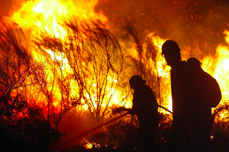 Firefighters try to extinguish a fire in the village of San Cristovo de Cea, northwest Spain, as wildfires spread in August 2003 (Getty)