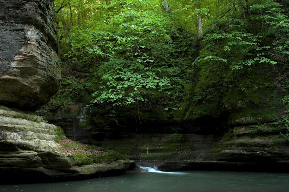 """<p>Imagine towering sandstone rock formations, flourishing green trees, and picturesque waterfalls. Yup, that's <a href=""""https://www.tripadvisor.com/Attraction_Review-g36808-d277909-Reviews-Starved_Rock_State_Park-Utica_Illinois.html"""" rel=""""nofollow noopener"""" target=""""_blank"""" data-ylk=""""slk:Starved Rock State Park"""" class=""""link rapid-noclick-resp"""">Starved Rock State Park</a> in Utica, Illinois, and it really is the stuff of daydreams. The trails are resplendent year-round, but when the trees change color in the fall, that's when it's really not to be missed.</p><p><br><a class=""""link rapid-noclick-resp"""" href=""""https://go.redirectingat.com?id=74968X1596630&url=https%3A%2F%2Fwww.tripadvisor.com%2FAttraction_Review-g36808-d277909-Reviews-Starved_Rock_State_Park-Utica_Illinois.html&sref=https%3A%2F%2Fwww.countryliving.com%2Flife%2Ftravel%2Fg24487731%2Fbest-hikes-in-the-us%2F"""" rel=""""nofollow noopener"""" target=""""_blank"""" data-ylk=""""slk:PLAN YOUR HIKE"""">PLAN YOUR HIKE</a></p>"""