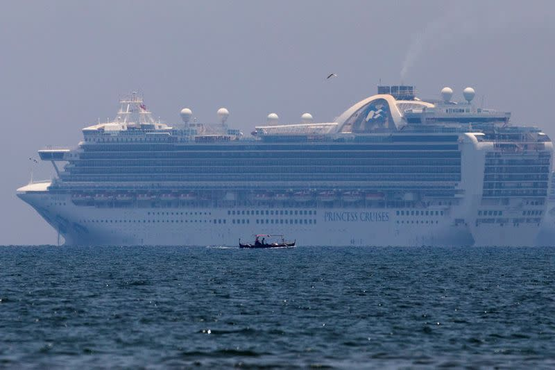 Carnival's Princess Cruises to extend some voyage suspensions until December