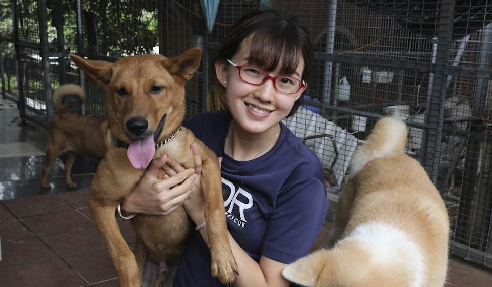 Eva Sit, communications manager at the Hong Kong Dog Rescue, in Tai Po. Photo: K. Y. Cheng
