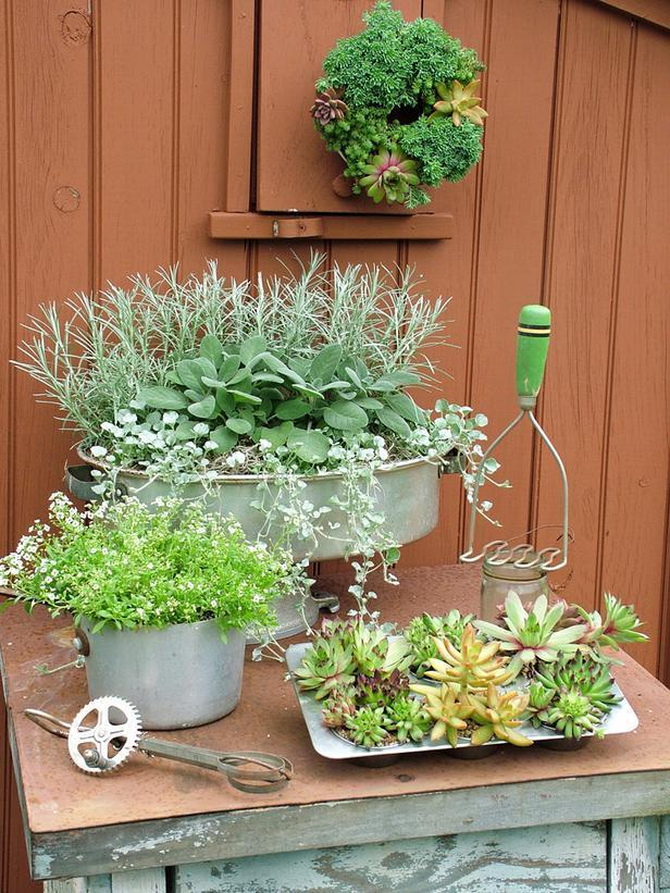 """<div class=""""caption-credit"""">Photo by: Nancy Ondra</div><div class=""""caption-title"""">Kitchen Capers</div>Old or damaged kitchen-related items -- those you don't plan to use for cooking any longer -- offer endless possibilities for plant containers. Cooking pots and pans are just the start: Try colanders, cupcake tins, measuring cups or any other items meant for holding liquid or dry materials. Bundt pans and angel food cake pans make perfect planters for living wreaths."""