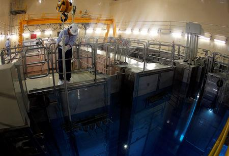 FILE PHOTO: A technician works inside the reactor at Atucha II nuclear power plant in Zarate, Argenntina September 28, 2011.  REUTERS/Enrique Marcarian/File photo