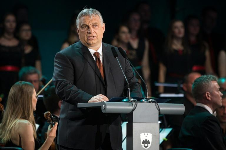 Over the last few years, there has been no love lost between supporters of Hungary's Prime Minister Viktor Orban and the leader of the Catholic world (AFP/Jure Makovec)