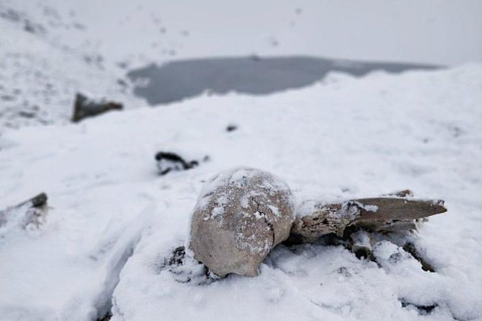 Naturally preserved ancient human skeletons under snow found beside high altitude alpine Roopkund lake in Indian Himalayas.