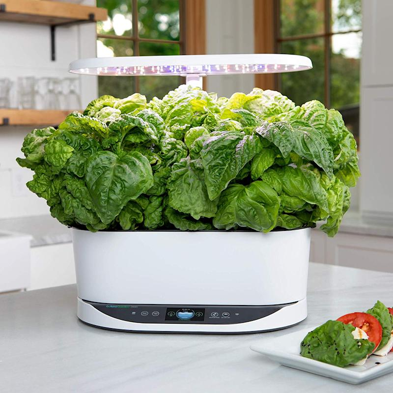 Bring on the basil! (Photo: Amazon)