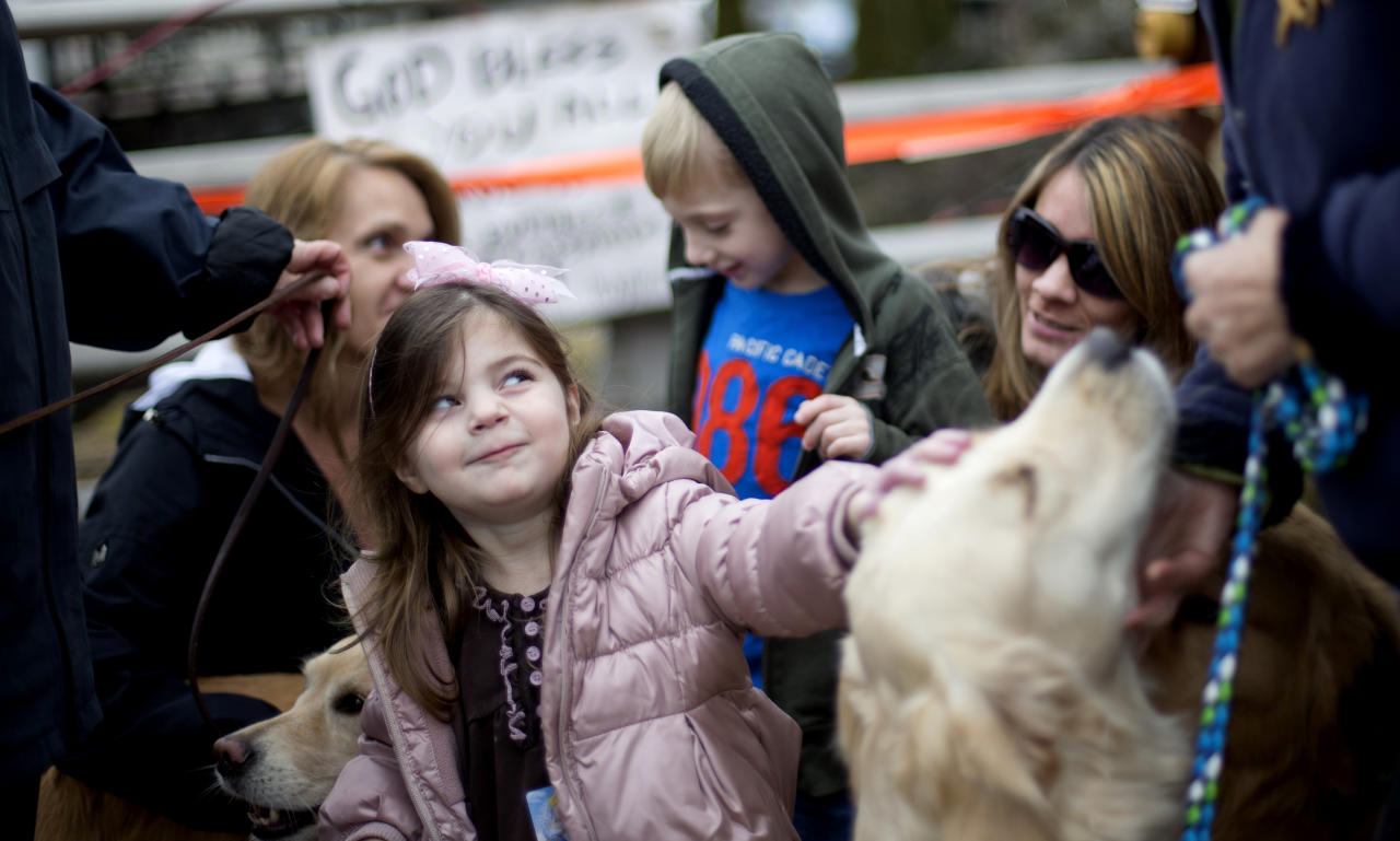 Lily Willinger, 2, of Newtown Conn., pets Tilley, a golden retriever therapy dog, during a visit from the dogs and their handlers to a memorial for the Sandy Hook Elementary School shooting victims, Tuesday, Dec. 18, 2012, in Newtown, Conn. (AP Photo/David Goldman)