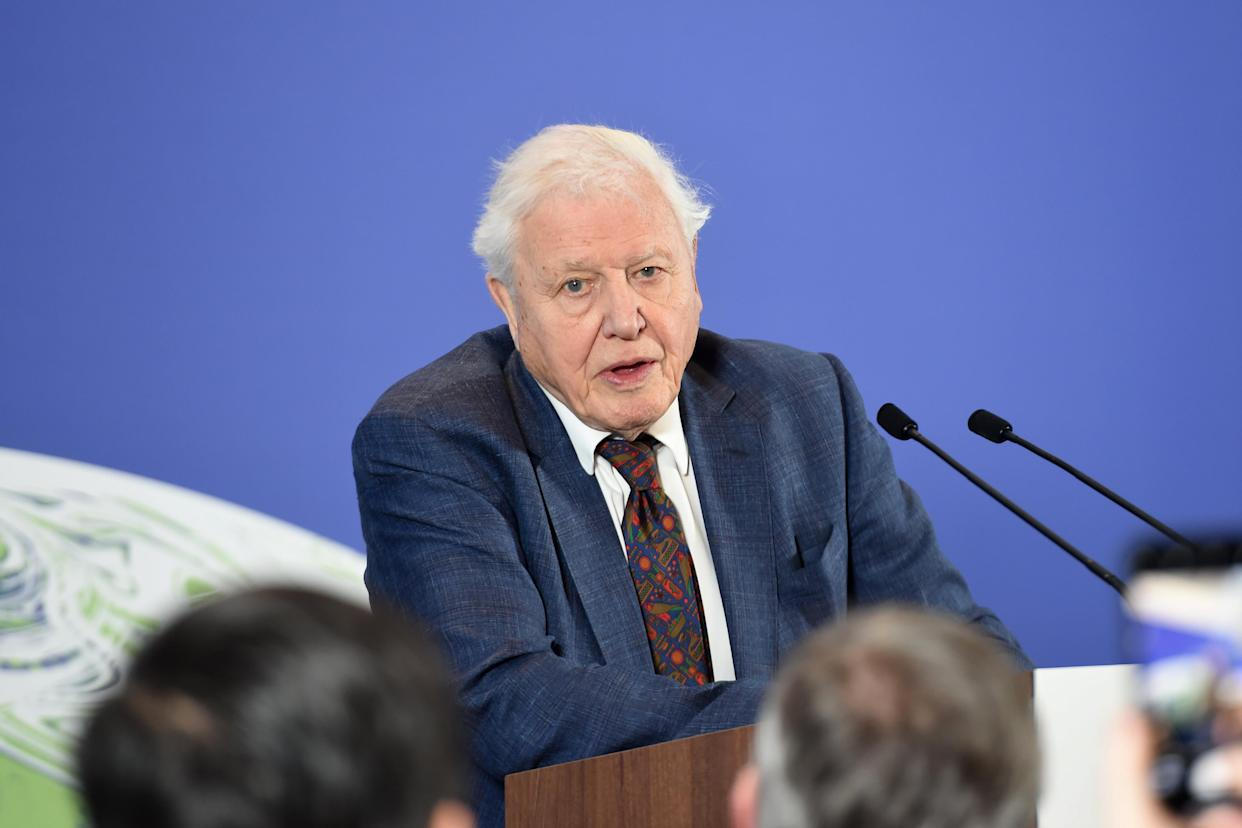 David Attenborough, photographed in 2020 at the Science Museum in London, has previously said