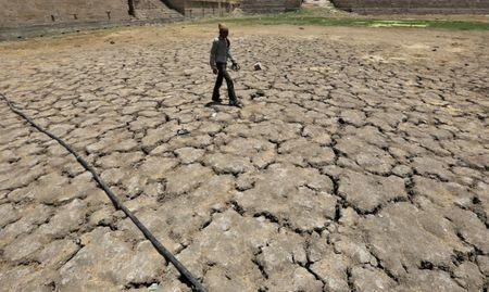 FILE PHOTO-A man walks through a dried-up Sarkhej lake on a hot summer day in Ahmedabad
