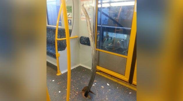 The shocking image of a piece of metal that has pierced through the floor of a Sydney train. Photo: Supplied/KimJong-Unbelievable