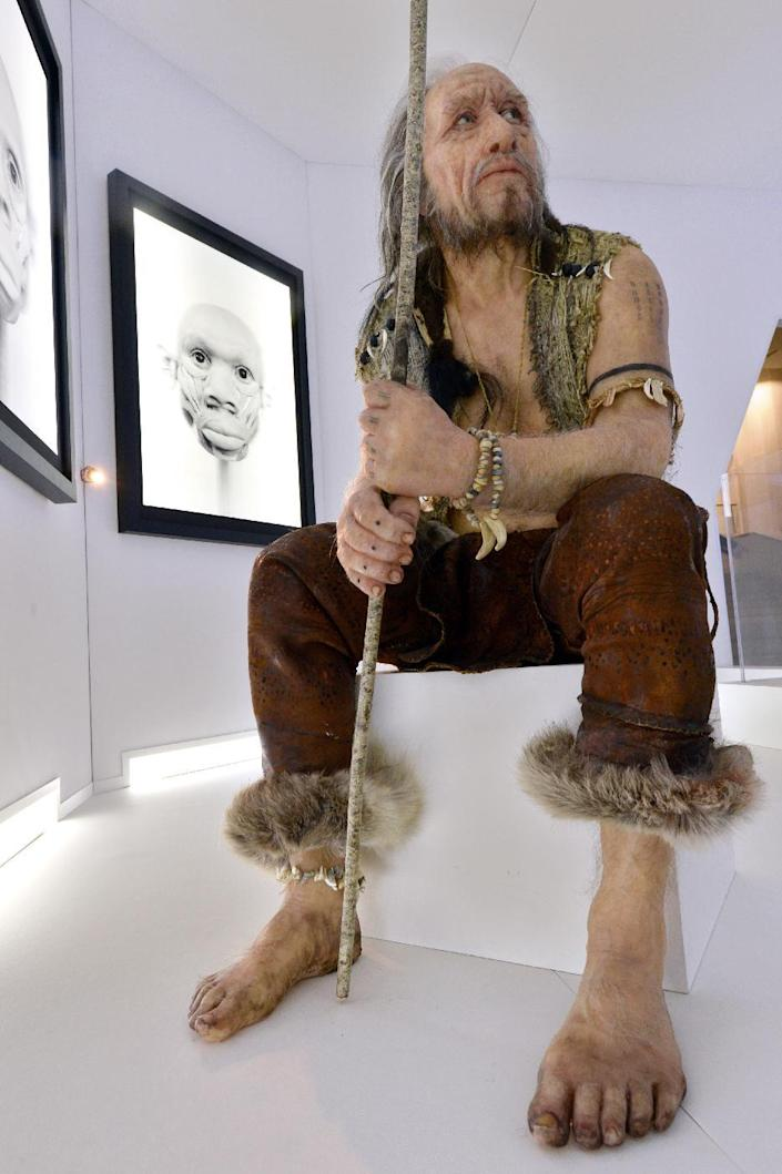 """A reconstruction of """"Chancelade Man"""" by visual artist Elisabeth Daynes is seen on November 7, 2014 in Bordeaux (AFP Photo/Mehdi Fedouach)"""