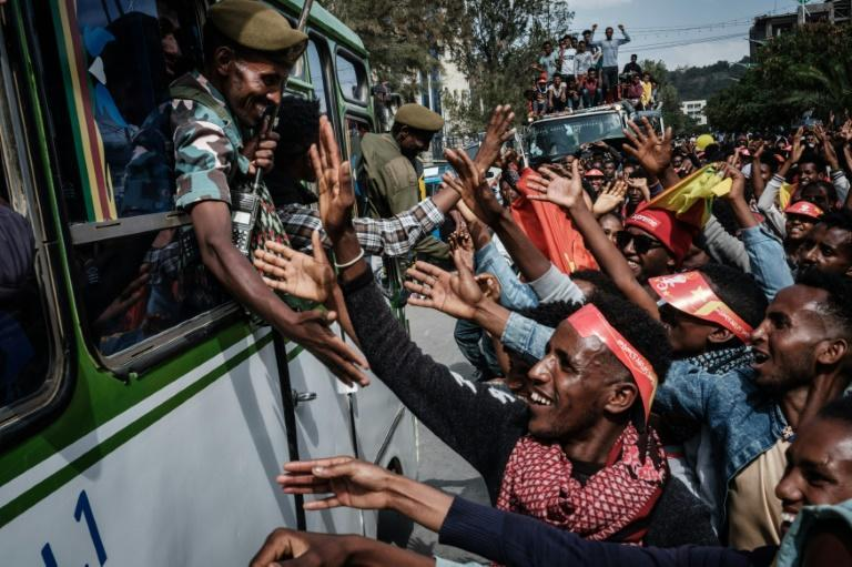 Members of the Tigray Defence Forces (TDF) were given a hero's welcome on their return