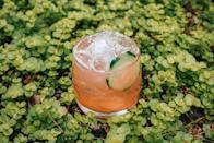 <p><strong>Ingredients</strong></p><p>1.5 oz Tito's Vodka<br>.25 oz Aperol<br>.75 oz honey simple syrup (1:1 honey and hot water)<br>.5 oz lime juice<br>4 cucumber slices</p><p><strong>Instructions</strong></p><p>In a mixing glass muddle the 4 cucumber slices. Add the rest of the ingredients, top with ice and shake. Strain the cocktail into a glass and top with fresh ice. Garnish with a cucumber wheel.</p><p><em>From the Hive Bentonville, in Bentonville, AR</em></p>