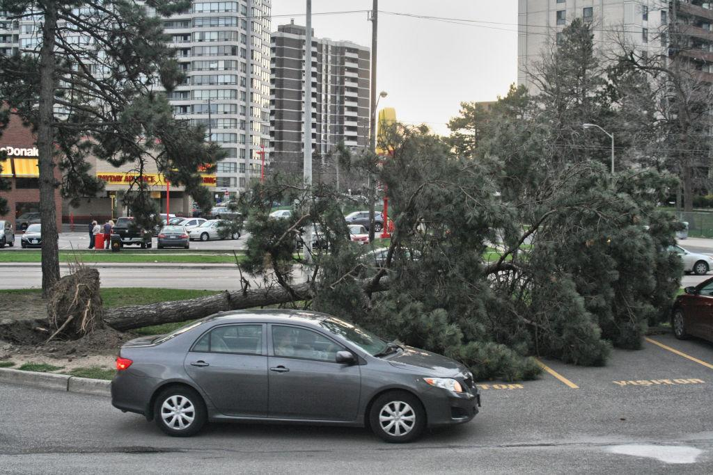 <p>A downed tree is shown in Toronto after extreme winds of up to 110 kilometres per hour ripped through the city on May 4, 2018. The wind storm destroyed homes and left tens of thousands without power across Southern Ontario. Two people were killed as a result of the storm including a forestry worker struck by a falling tree. (Photo from Creative Touch Imaging Ltd./NurPhoto) </p>
