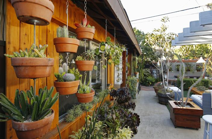 "Ryan Benoit invented Sky Pots, a plant-hanging kit that stacks hanging plants, shown at left at his La Jolla home on Feb. 6, 2020. <span class=""copyright"">(K.C. Alfred / The San Diego Union-Tribune)</span>"