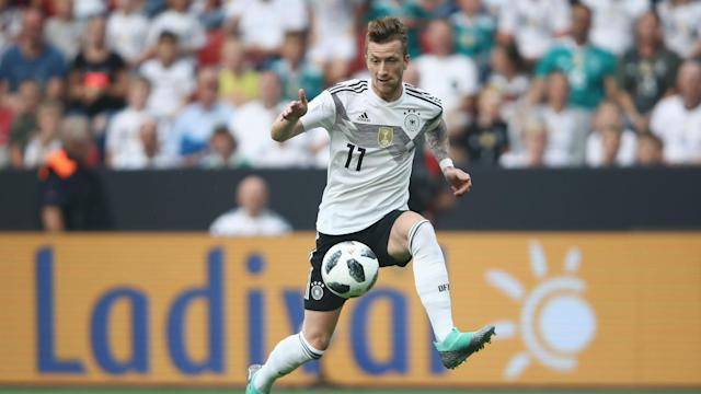Having missed out with injury four years ago, Cacau expects Germany's Marco Reus to be a big hit at the World Cup.