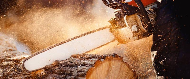 Chainsaw in move cutting wood. Man cut with saw. Dust and movements.