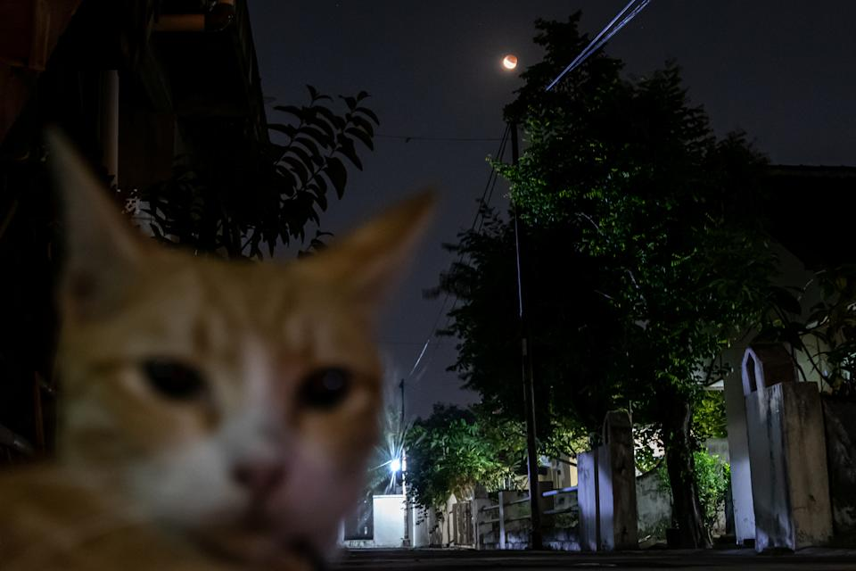 A total lunar eclipse is seen in Jakarta, Indonesia, on May 26, 2021. The total lunar eclipse, also known as a super blood moon occurs when the total lunar eclipse takes place at the same time the moon is in perigee, the closest point to Earth in its orbit. (Photo by Rizqullah Hamiid/NurPhoto via Getty Images)