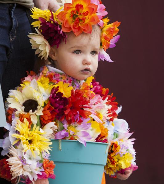 Dressed as potted flowers, 18-month-old Tianna Rapp, of Middleton, Idaho won second place in her age group at the annual Boo at the Zoo event in Boise, Idaho on Saturday Oct. 27, 2012. (AP Photo/The Idaho Statesman, Darin Oswald) LOCAL TV OUT; KTVB 7 OUT; MANDATORY CREDIT; THE IDAHO STATESMAN, DARIN OSWALD