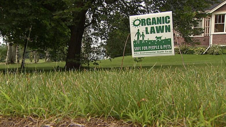 Exemptions in Charlottetown's pesticide bylaw could be exterminated