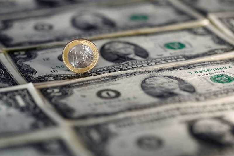 Options markets flash euro warnings after currency plunges past $1.08