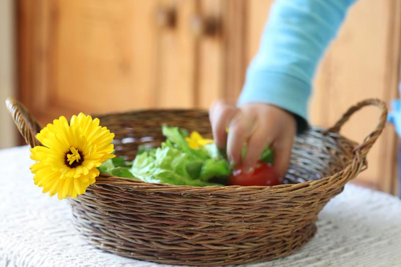 little child taking a tomato from basket full of salad ingredients, motion blur