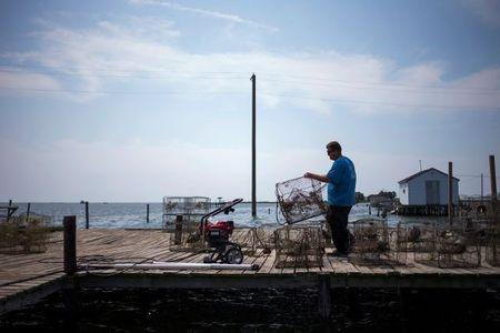 Local islander Jim Shores lays out his crab traps to dry along a dock on Tangier Island, Virginia, U.S., August 3, 2017. REUTERS/Adrees Latif
