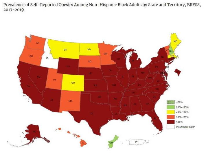 The 2019 CDC Adult Obesity Prevalence Maps report shows that among non-Hispanic Black adults, the majority of the country — 34 states and the District of Columbia — had an obesity prevalence of 35% percent or higher — including Florida.