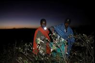 The Wider Image: Farmers fight back: making animal feed from a locust plague