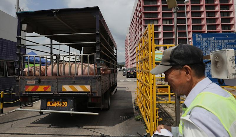 Business brisk despite up to 50 per cent jump in pork prices as Hong Kong butchers resume trade following African swine fever case